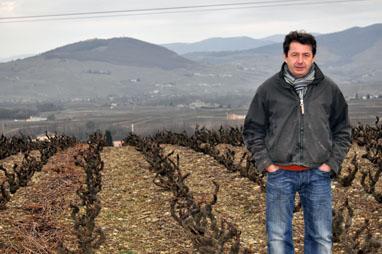 Beaujolais Jean Foillard, Morgon Cote du Py 2013