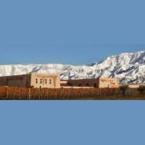 winery_argentina_flechas_de_los_andes_