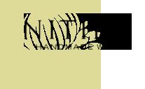 Nitida Sauvignon Blanc 2016