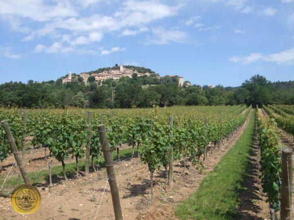 Pinot Noir Domaine de Valmoissine 2014 Cahors