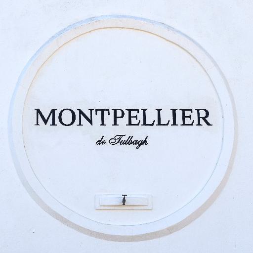 Montpellier Spyseniersberg Bordeaux-style blend 2013