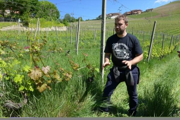 Luca Roagna in vineyard