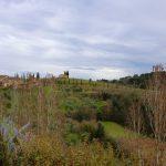 landscape castell'in villa.jpg
