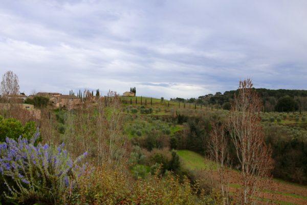 Chianti Classico Castell'in Villa DOCG 2013