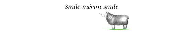 Hermanuspietersfontein Nr.7 Kaalvoet Meisie Sauvignon Blanc 2016