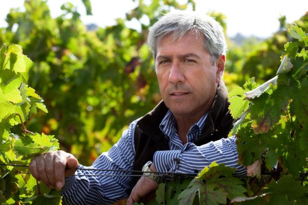 Rioja Blanco Remirez de Ganuza 2014